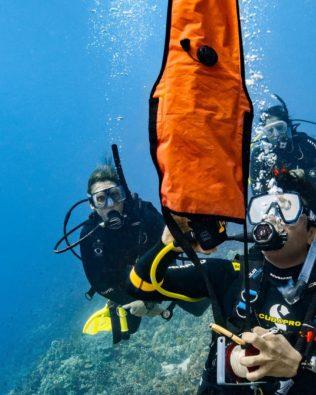 Delayed SMB Diver